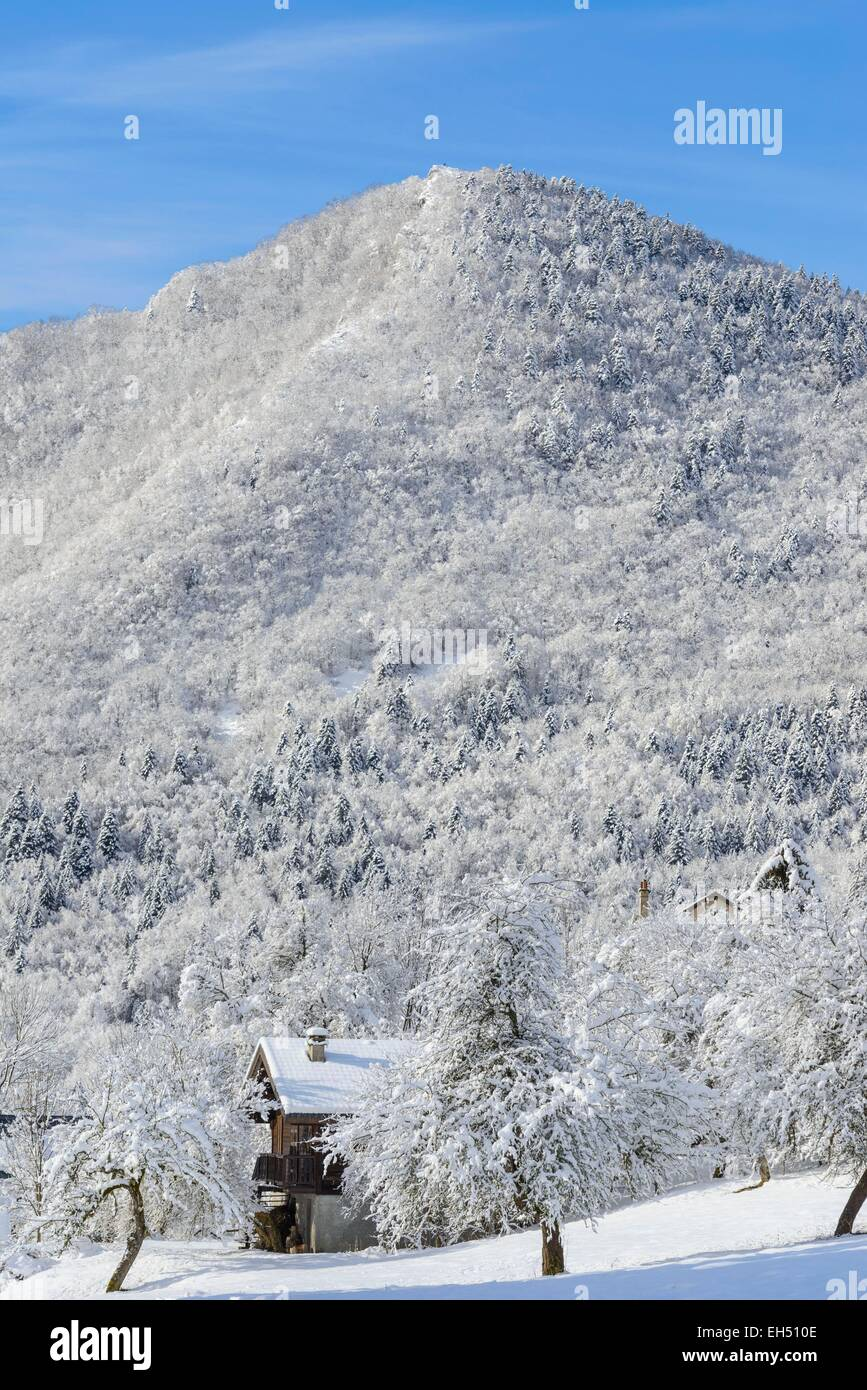 France, Isere, Chartreuse Regional Park, Le Sappey en Chartreuse, the skiresort in winter - Stock Image