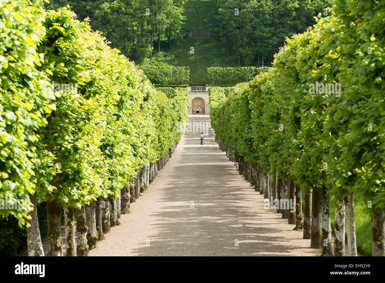 France, Indre et Loire, Loire Valley listed as World Heritage by UNESCO, Villandry, castle of Villandry gardens - Stock Image