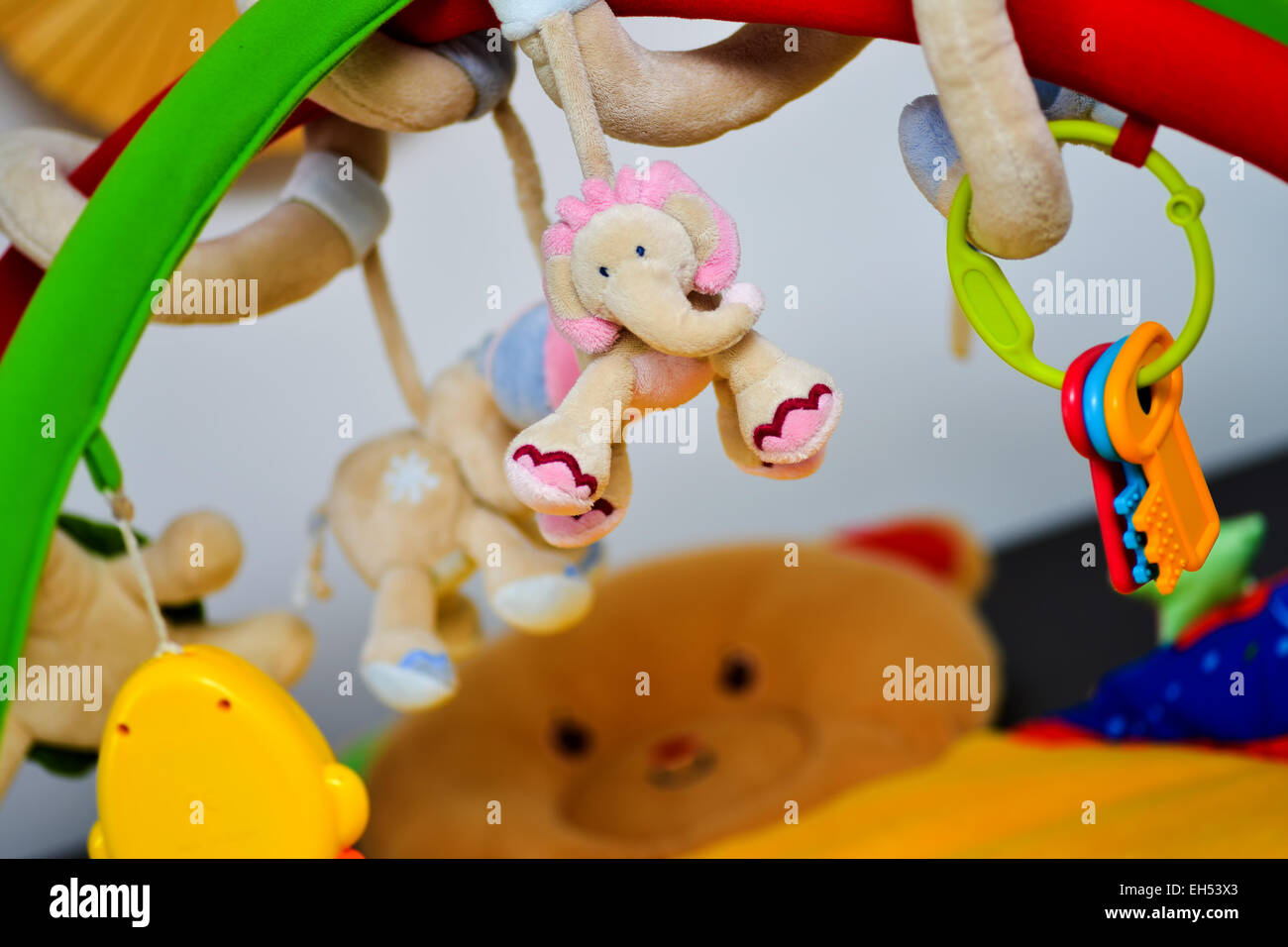 Elephant Plush Toy for Newborns with a colored background toys - Stock Image