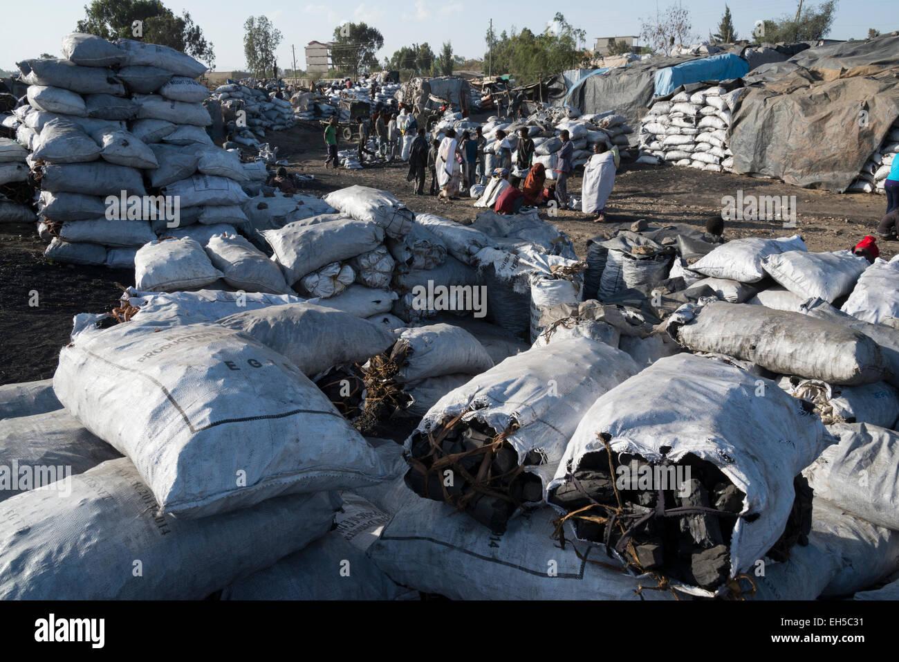 Charcoal market. Mekele. Northern Ethiopia. - Stock Image