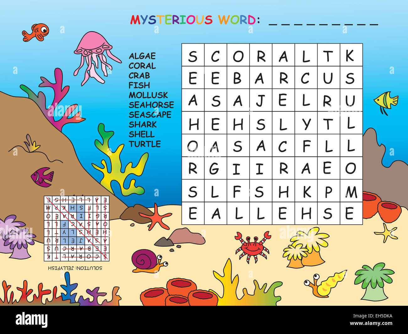 Turtle Word Stock Photos & Turtle Word Stock Images - Alamy