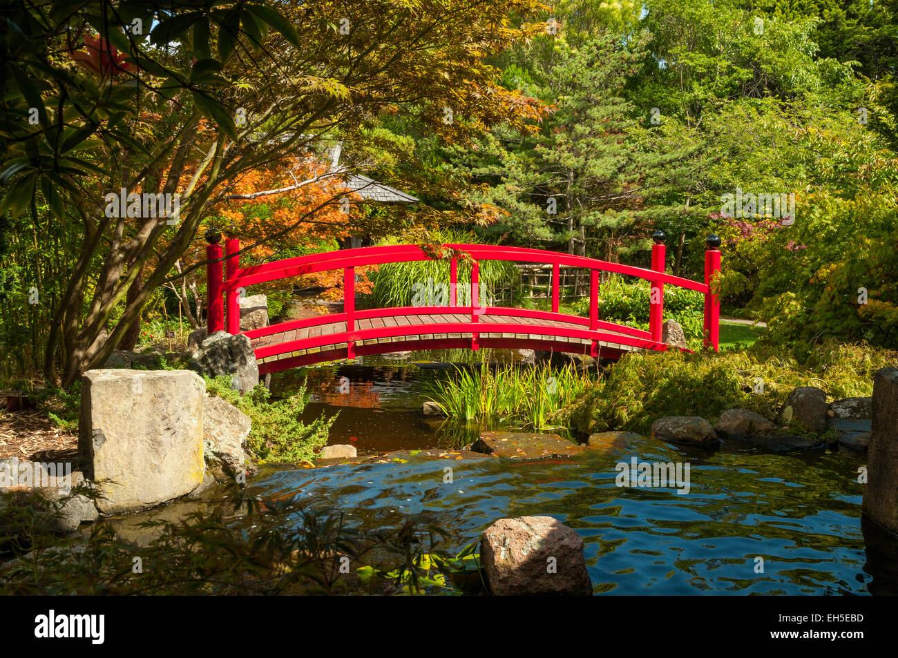 Japanese Gardens Australia Stock Photos & Japanese Gardens Australia ...