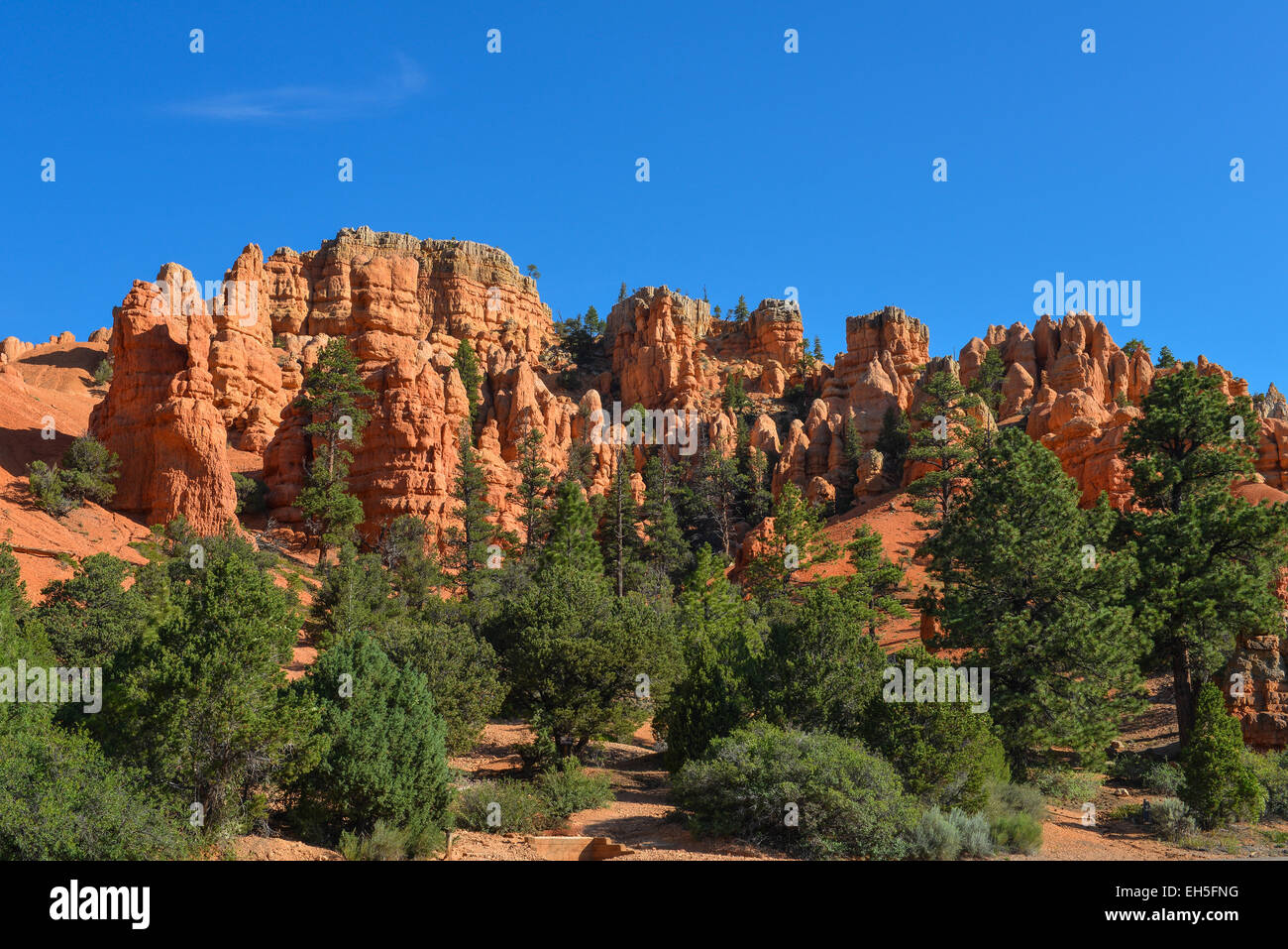 red rock formation in Cedar Breaks National Park, Utah - Stock Image