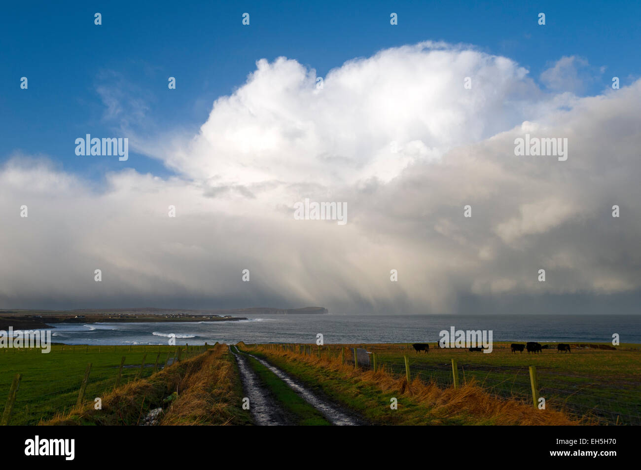 Storm cloud over the Pentland Firth, approaching the north coast of Caithness, near of Mey. Scotland, UK. Dunnet - Stock Image