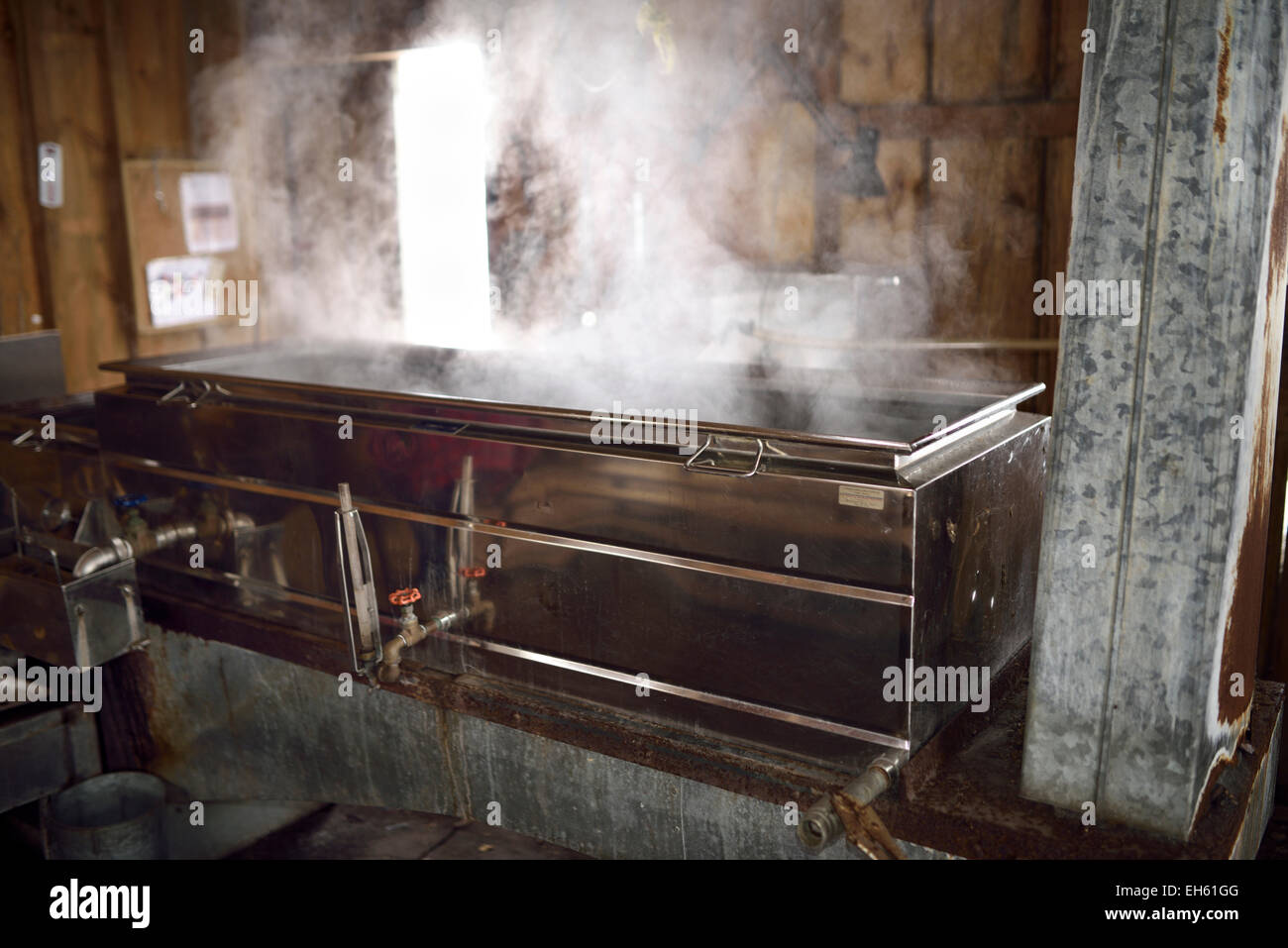 Wood burning steel evaporator with steaming sap for Maple syrup production inside a sugar shack Ontario Canada - Stock Image