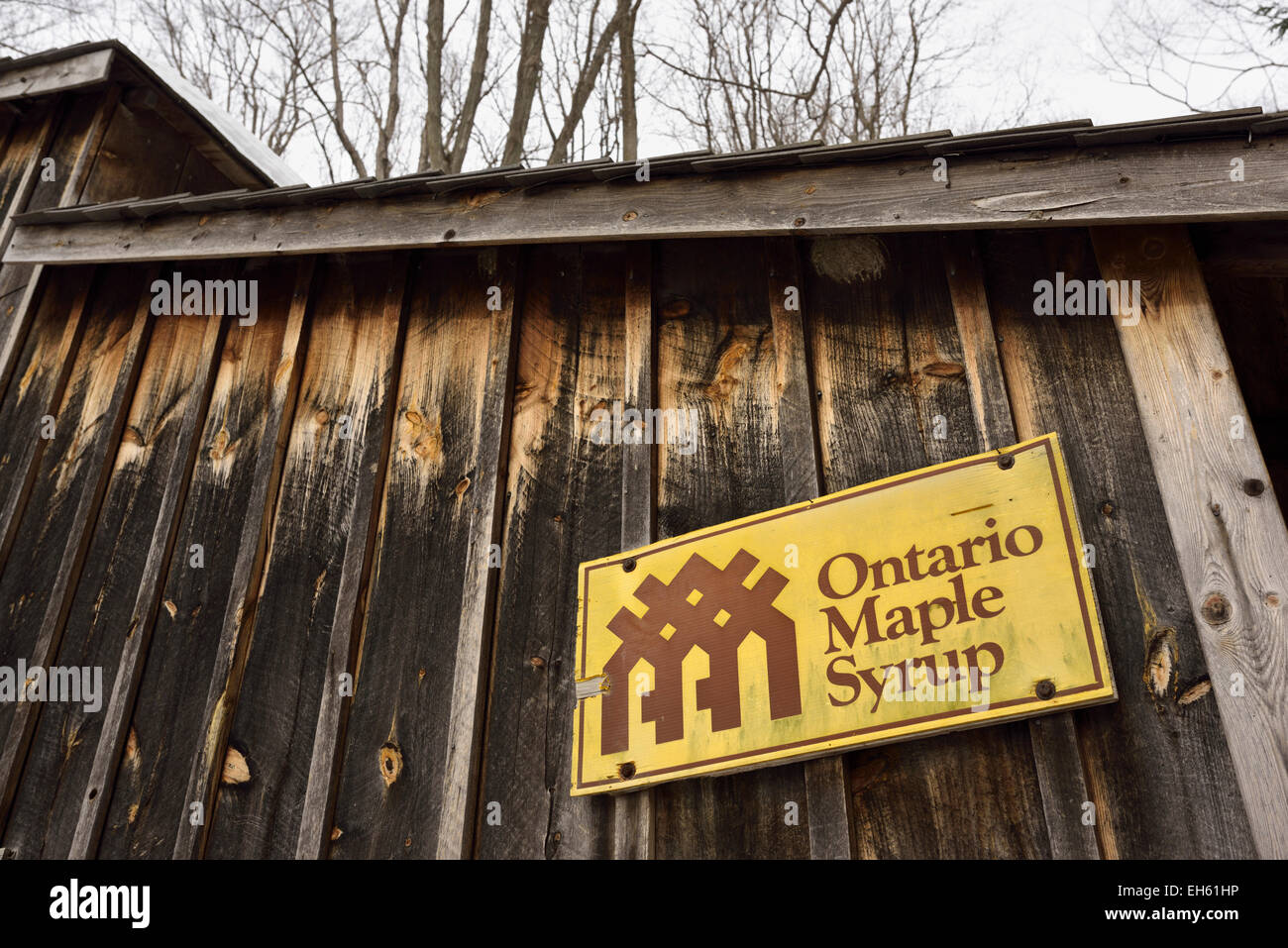 Sugar shack with the Ontario Maple Syrup Producers Association logo - Stock Image