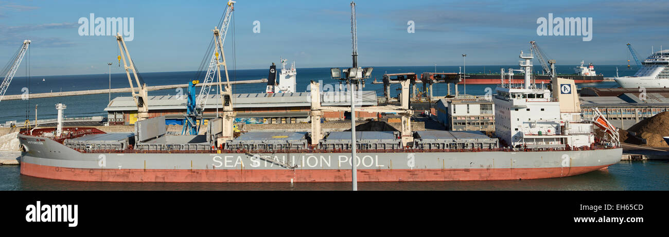 Livorno, Italy, Sea Stallion Pool cargo bulk ship - Stock Image