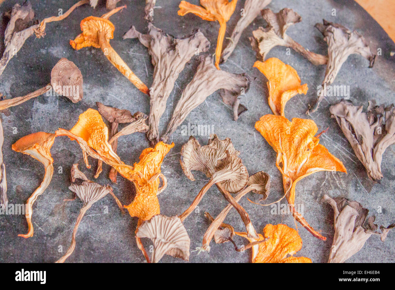 Dried black- , funnel- and ordinary chantarelles, on a stone plate Stock Photo