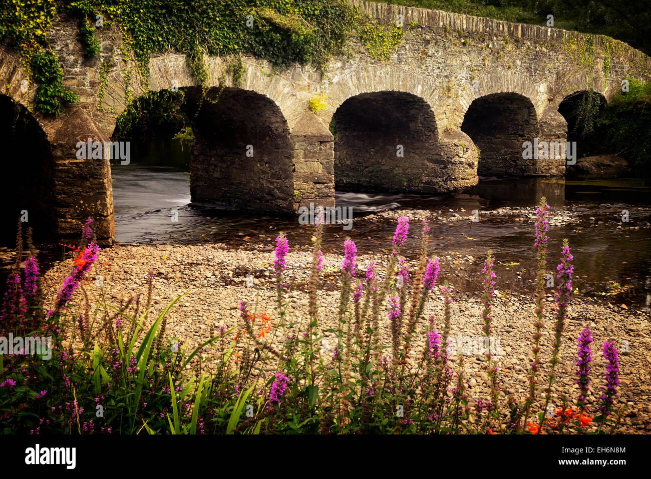Bridge over Gearhmeen River with wildflowers, Killarney National Park, Ireland - Stock Image