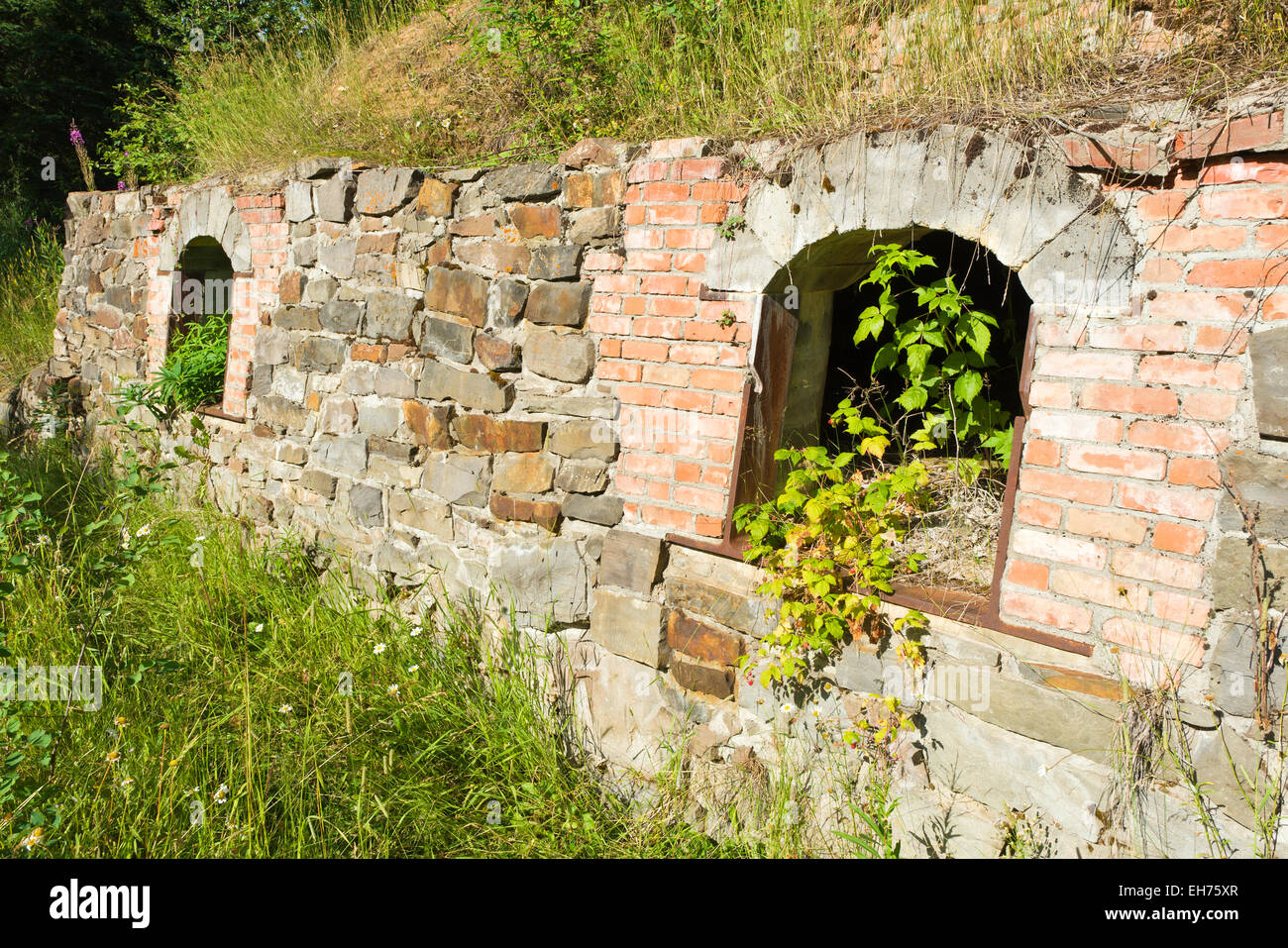 Derelict coke ovens near Fernie, BC, Canada.  Primitive ovens are a historic remnant of the Crow's Nest Pass - Stock Image