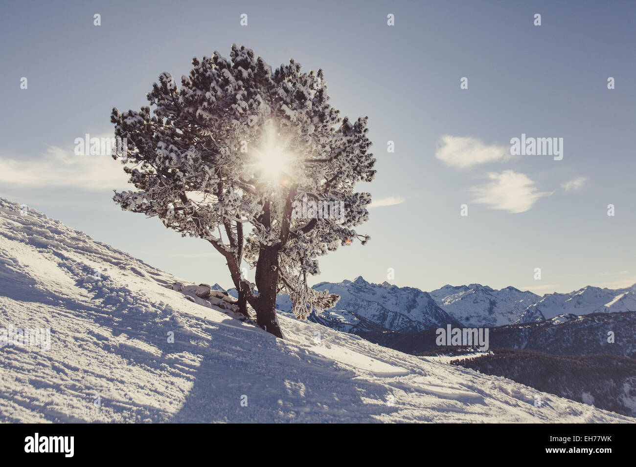 Pyrenees - Stock Image