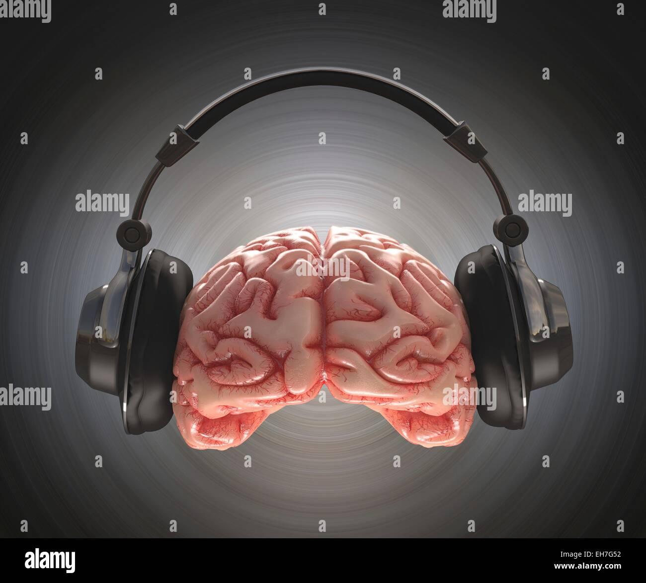 Human brain and headphone, artwork - Stock Image