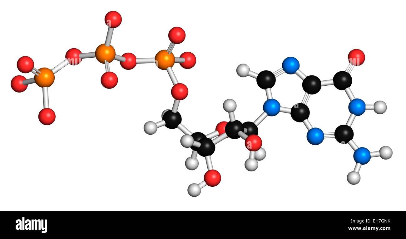 Guanosine triphosphate molecule Stock Photo