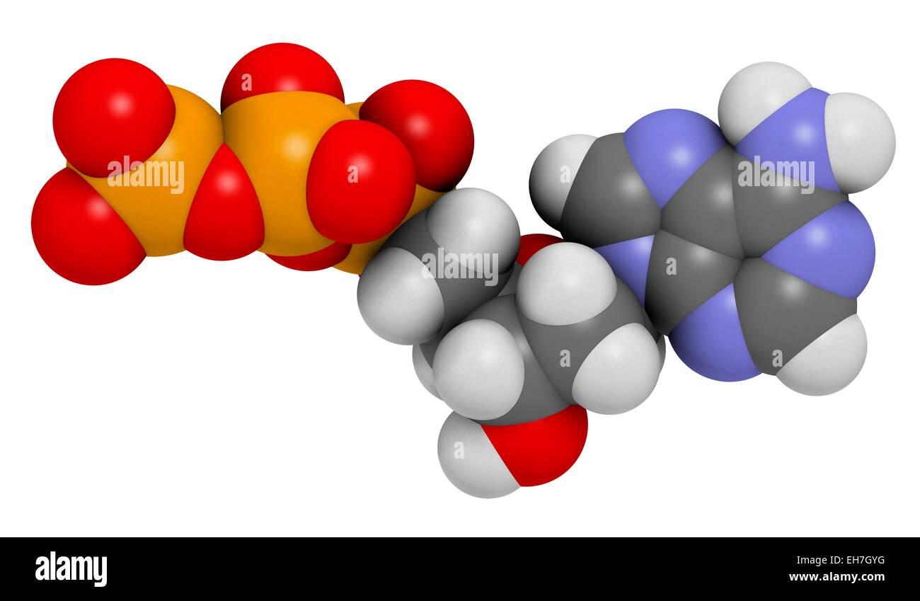 Deoxyadenosine triphosphate molecule Stock Photo