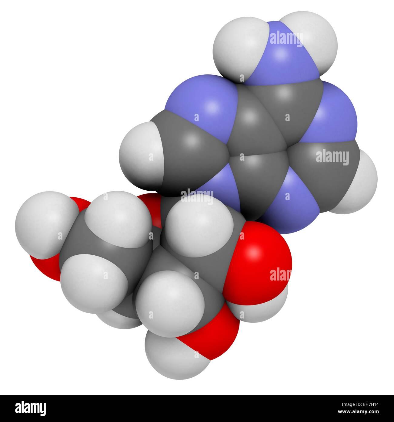 Adenosine purine nucleoside molecule - Stock Image