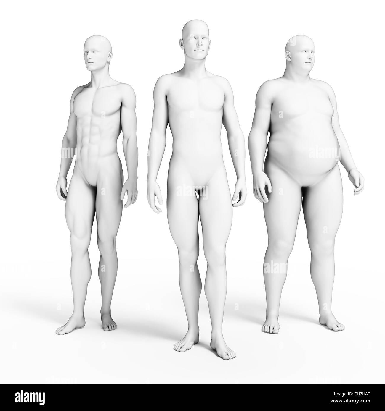 Various body shapes, illustration - Stock Image