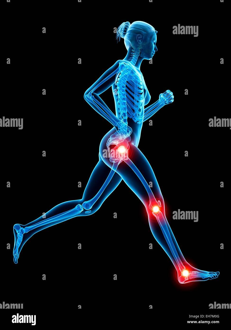 Human Body Joints Illustration Stock Photos Human Body Joints