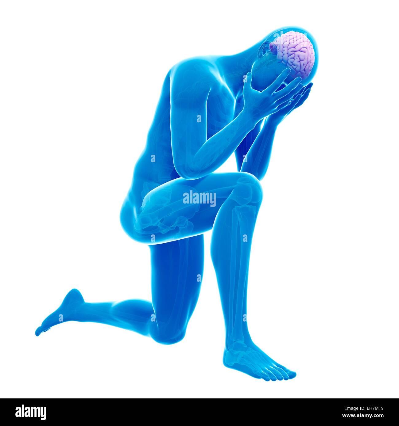 Human brain, illustration - Stock Image