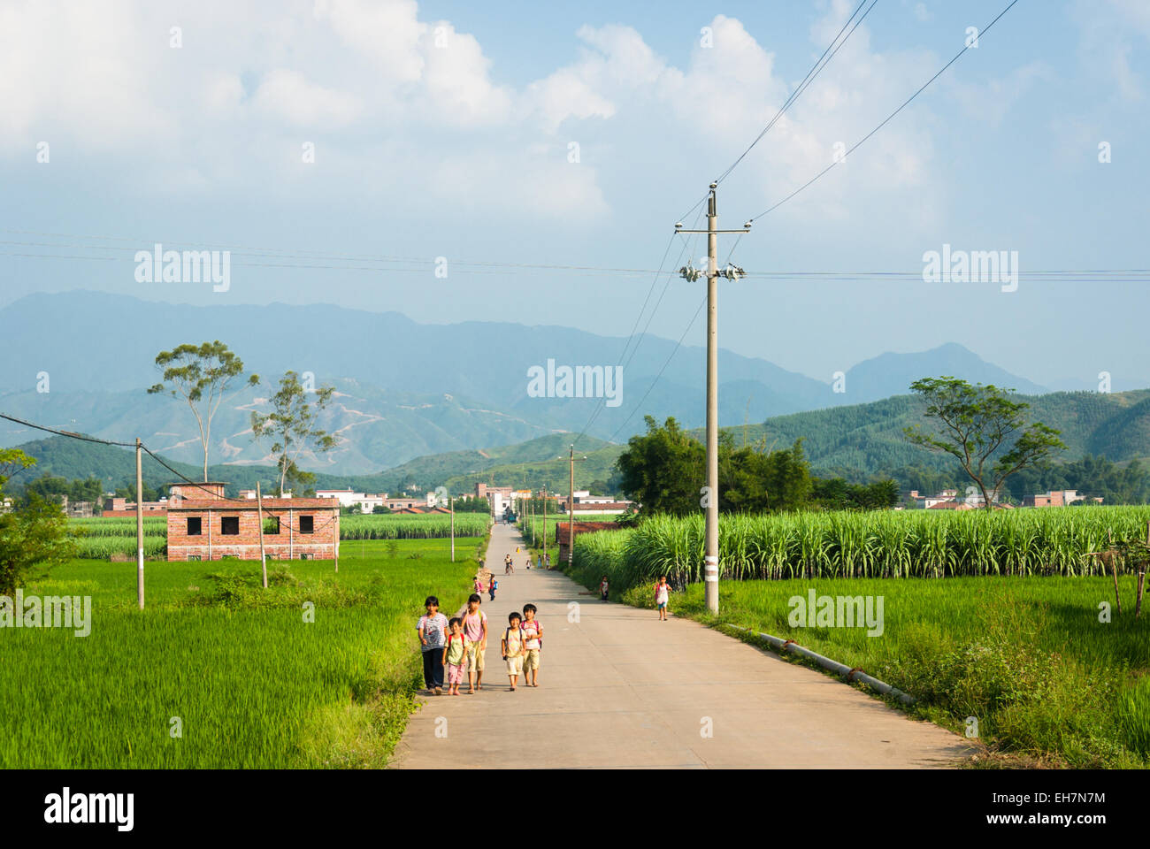 Children returning home from school along road in rural Guangdong, China - Stock Image