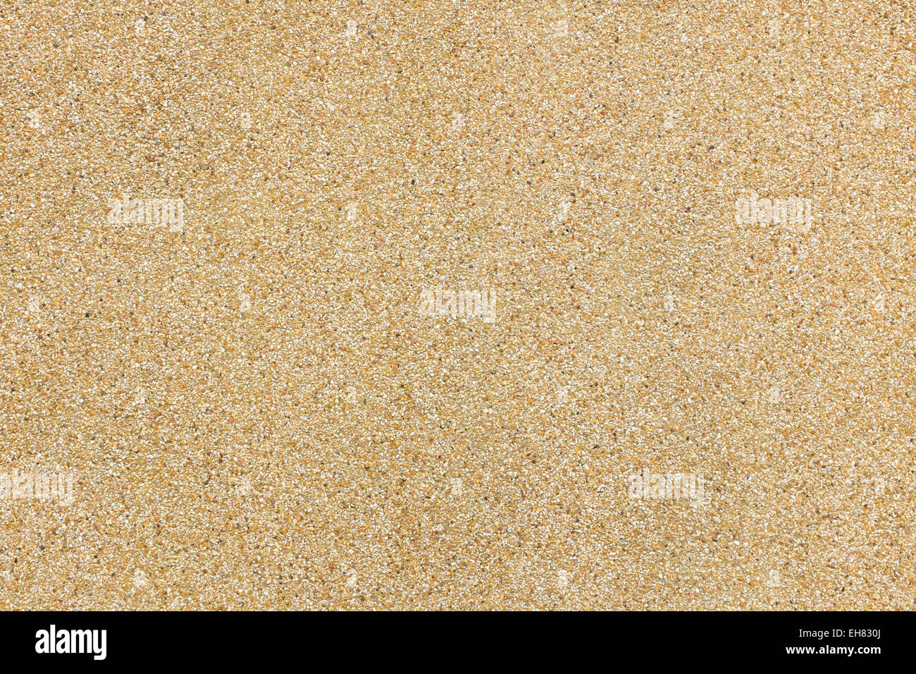 close up texture and pattern of sand wall red color background Stock ...
