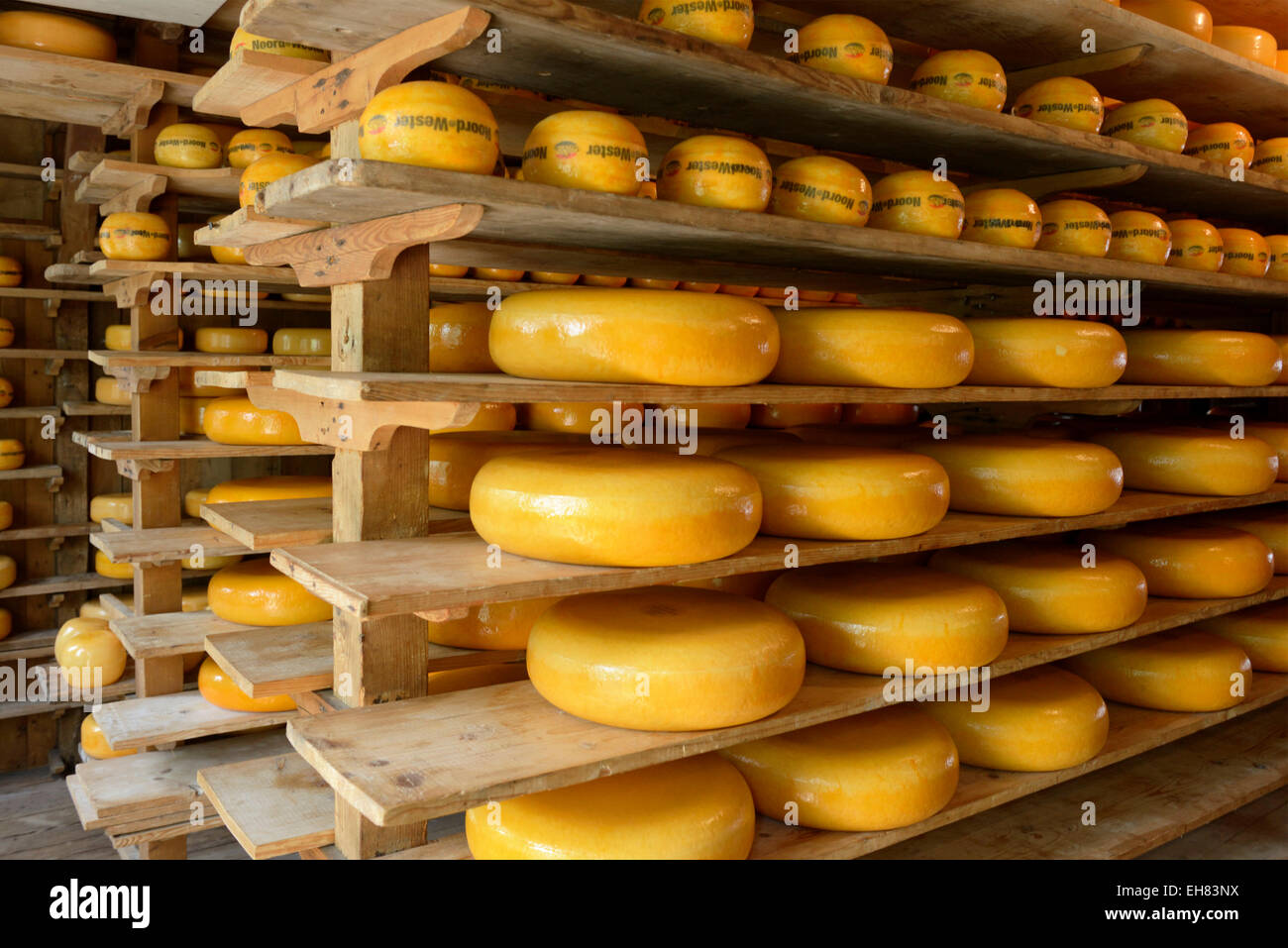 Cheese warehouse, Zuiderzee open air museum, Lake Ijssel, Enkhuizen, North Holland, Netherlands, Europe - Stock Image