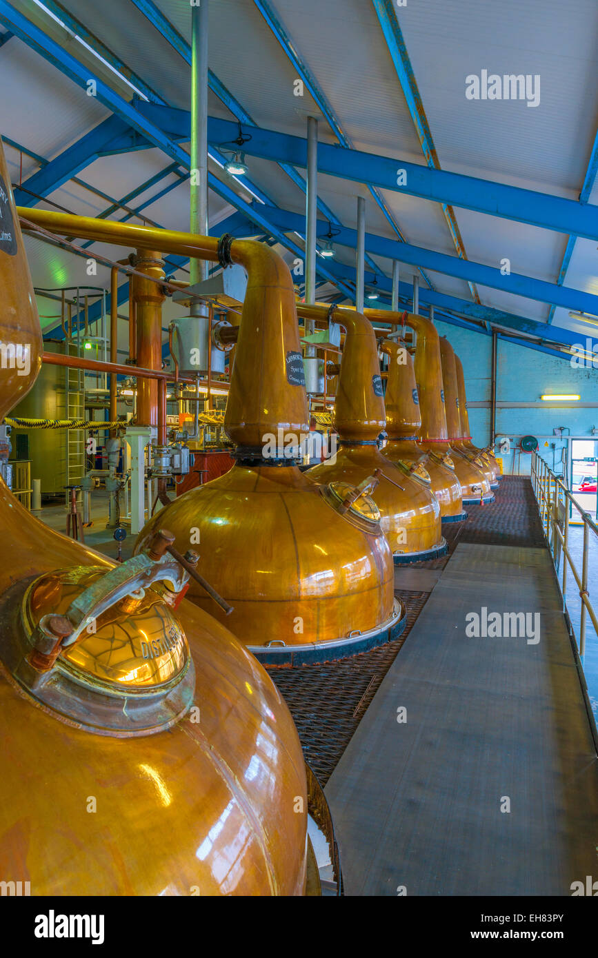 Copper pot stills, Laphroaig Whisky Distillery, Islay, Argyll and Bute, Scotland, United Kingdom, Europe - Stock Image
