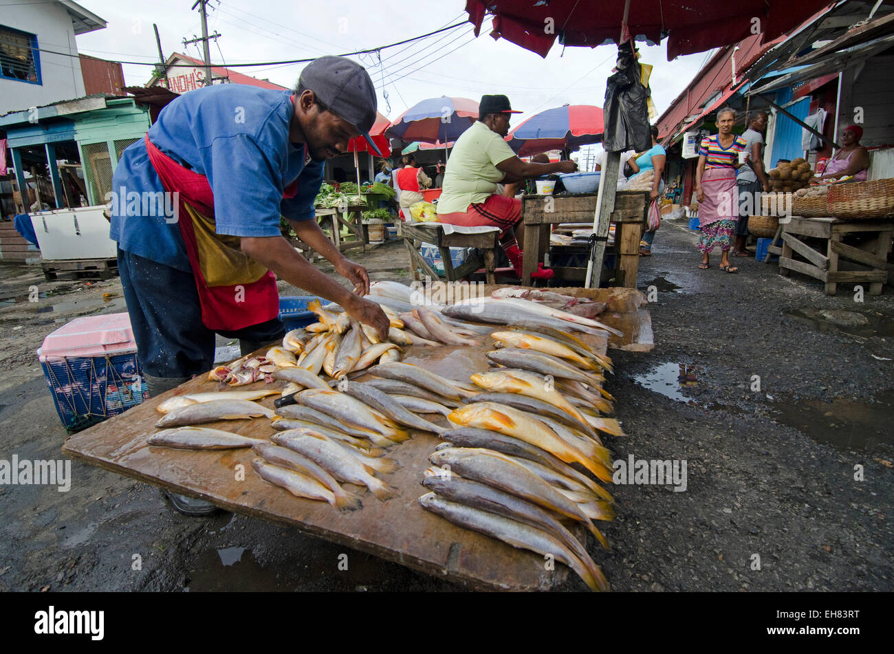 Fish stall in Stabroek Market, Georgetown, Guyana, South America - Stock Image