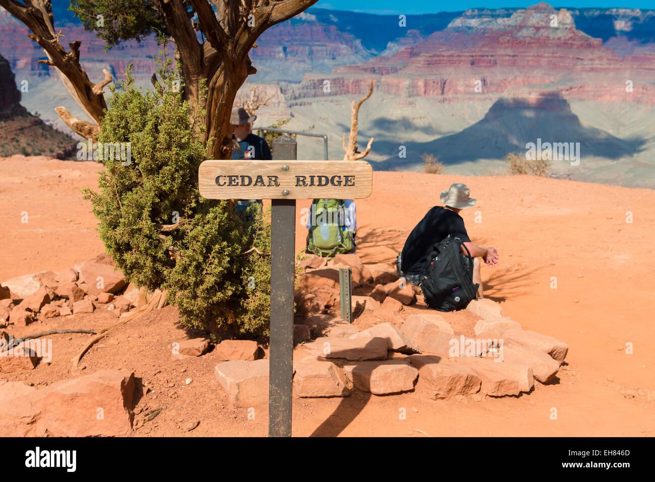 Cedar Ridge on South Kaibab Trail, Grand Canyon National Park - Stock Image
