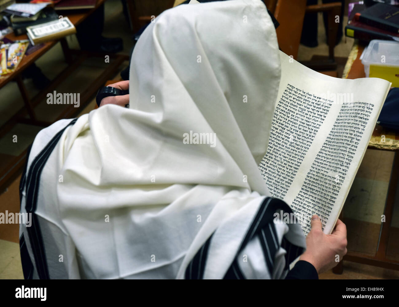 An ultra religious Jewish man photographed from behind reading the Megillah on Purim at a synagogue in Brooklyn, - Stock Image