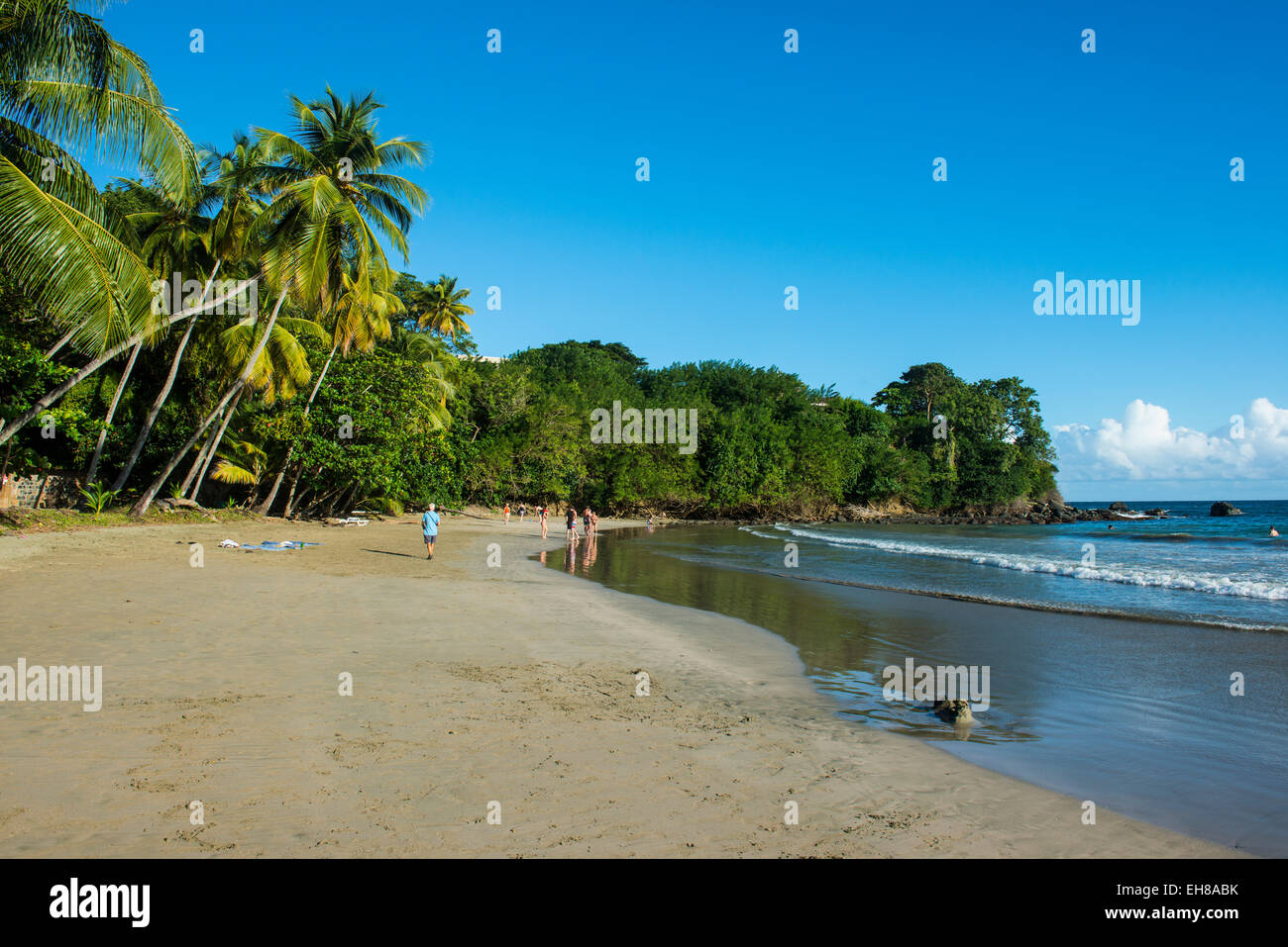 Bacolet Beach, Tobago, Trinidad and Tobago, West Indies, Caribbean, Central America - Stock Image
