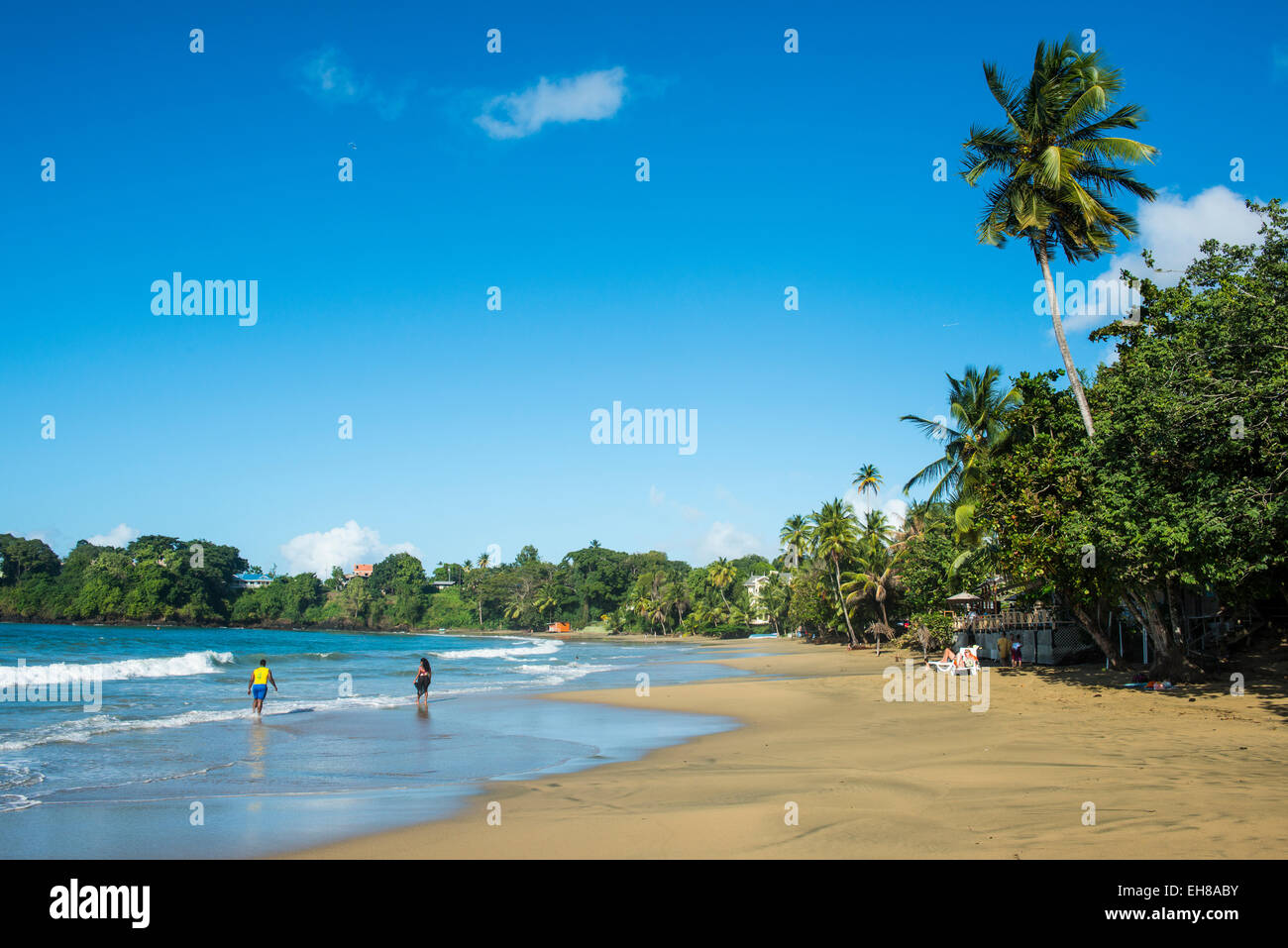 The beach of Stonehaven Bay, Tobago, Trinidad and Tobago, West Indies, Caribbean, Central America - Stock Image