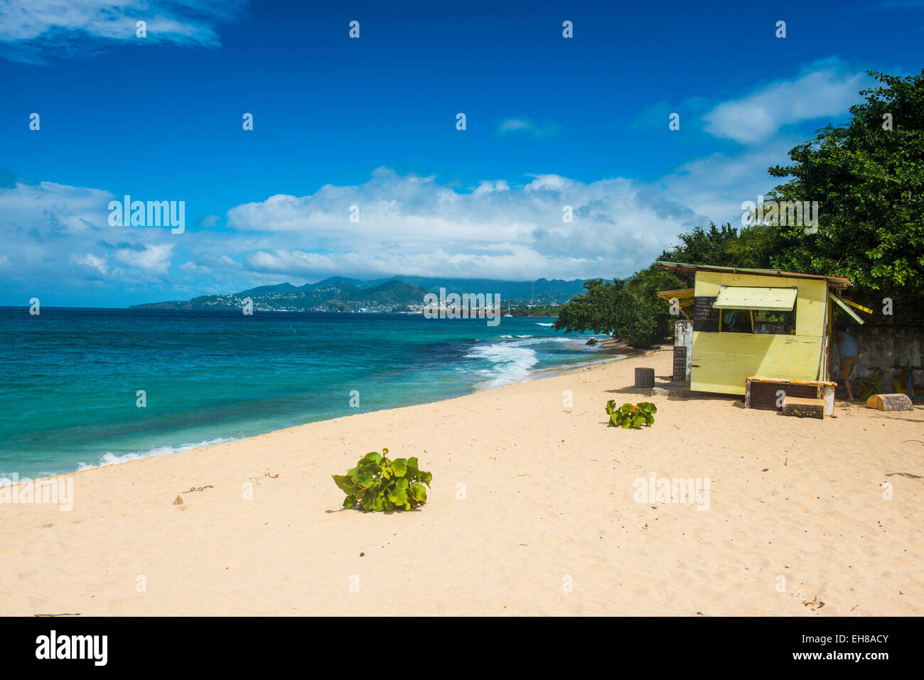 Magazine Beach, Grenada, Windward Islands, West Indies, Caribbean, Central America - Stock Image