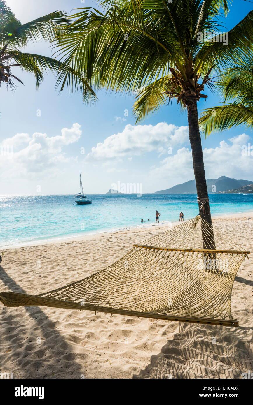 Hammock between two palms on a sandy beach, Palm Island, The Grenadines, Windward Islands, West Indies, Caribbean - Stock Image