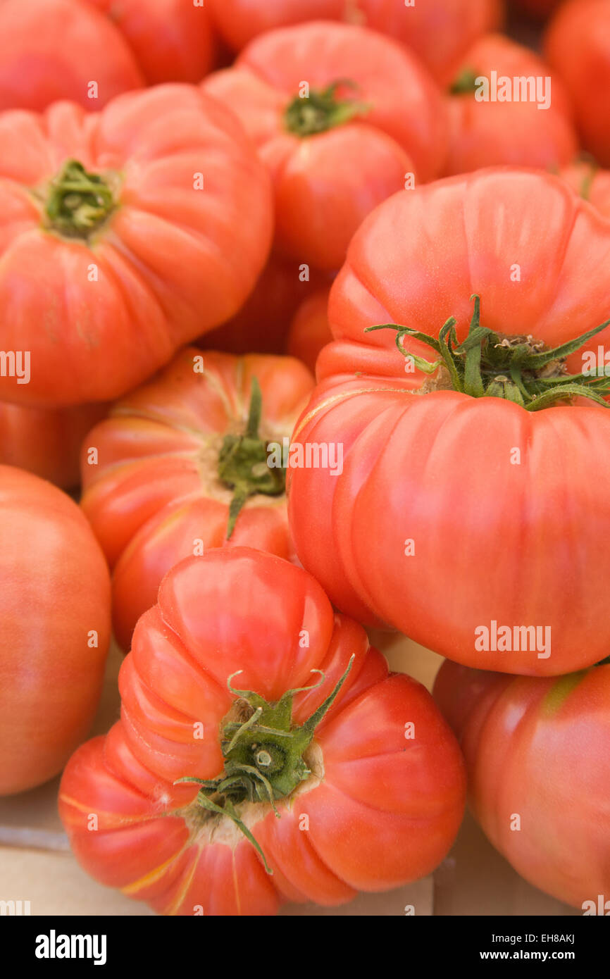 Pile of heirloom Brandywine tomatoes for sale at a farmers market in Issaquah, Washington, USA - Stock Image