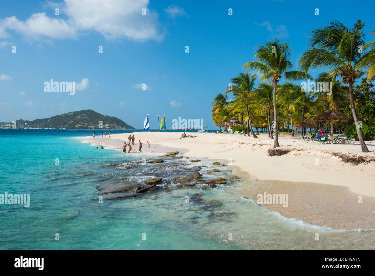 Palm Island, The Grenadines, St. Vincent and the Grenadines, Windward Islands, West Indies, Caribbean, Central America - Stock Image