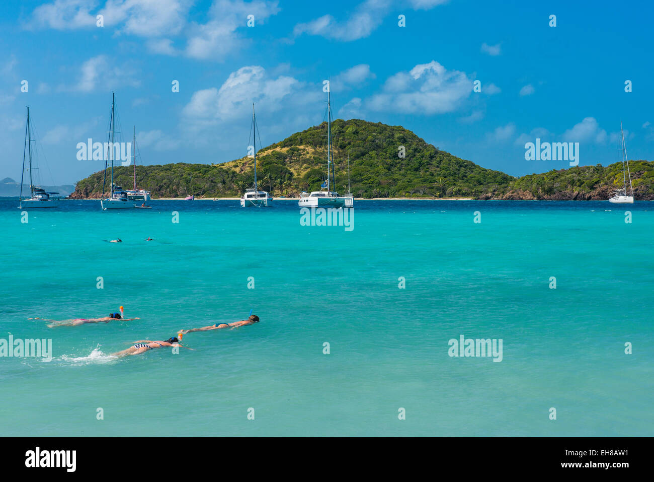 Tourists snorkeling in the turquoise waters of the Tobago Cays, The Grenadines, Windward Islands, West Indies, Caribbean - Stock Image