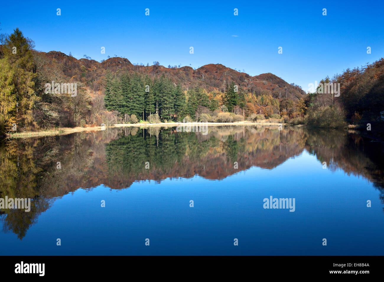 Yew Tree Tarn on a sunny autumn day, Lake District National Park, Cumbria, England, United Kingdom, Europe - Stock Image