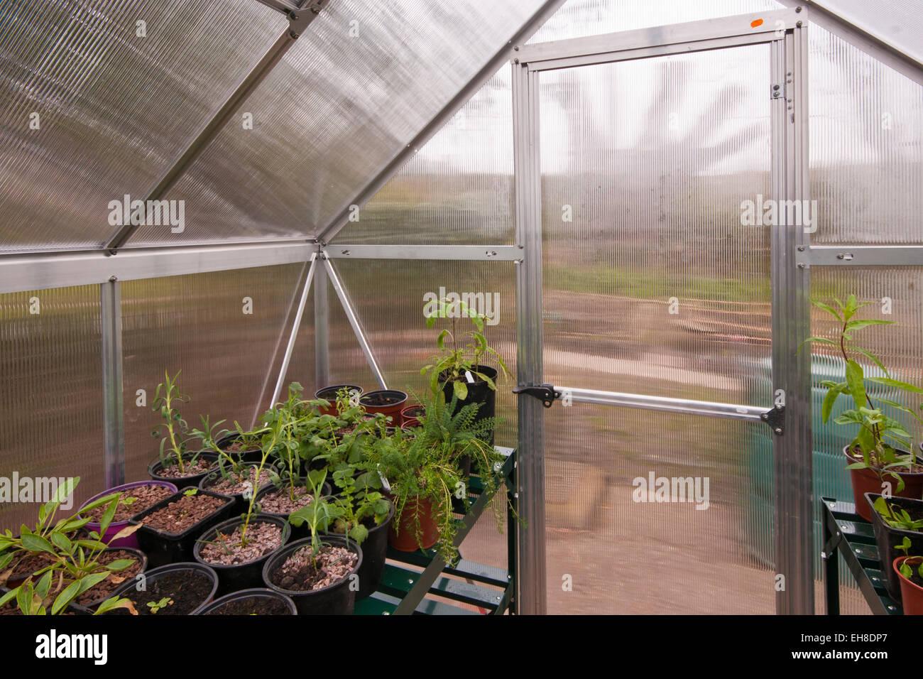 garden greenhouse door stock photos garden greenhouse door stock images alamy. Black Bedroom Furniture Sets. Home Design Ideas