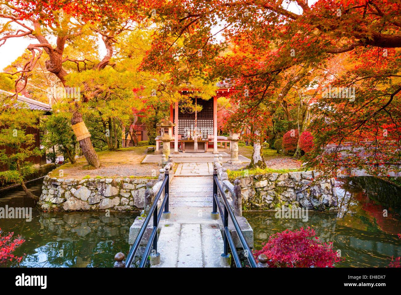 Fall foliage in Kyoto, Japan. Stock Photo