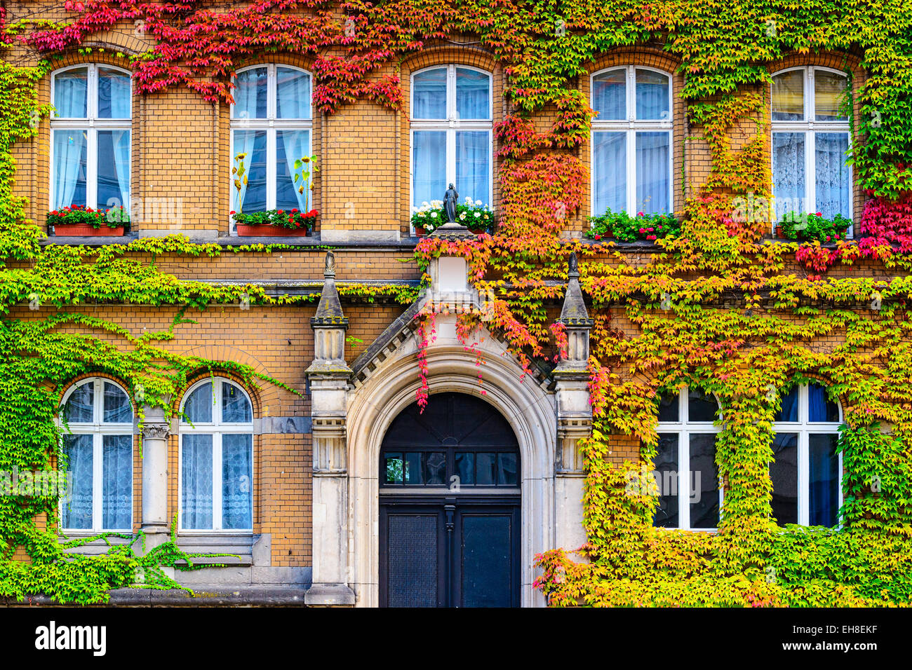 Vine covered building facade in Berlin, Germany. - Stock Image