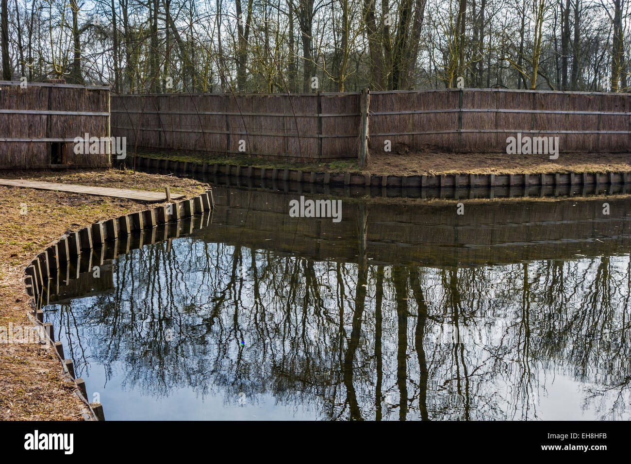 Duck decoy structure used for catching wild ducks showing pond and beginning of pipe formed by hoops with netting - Stock Image