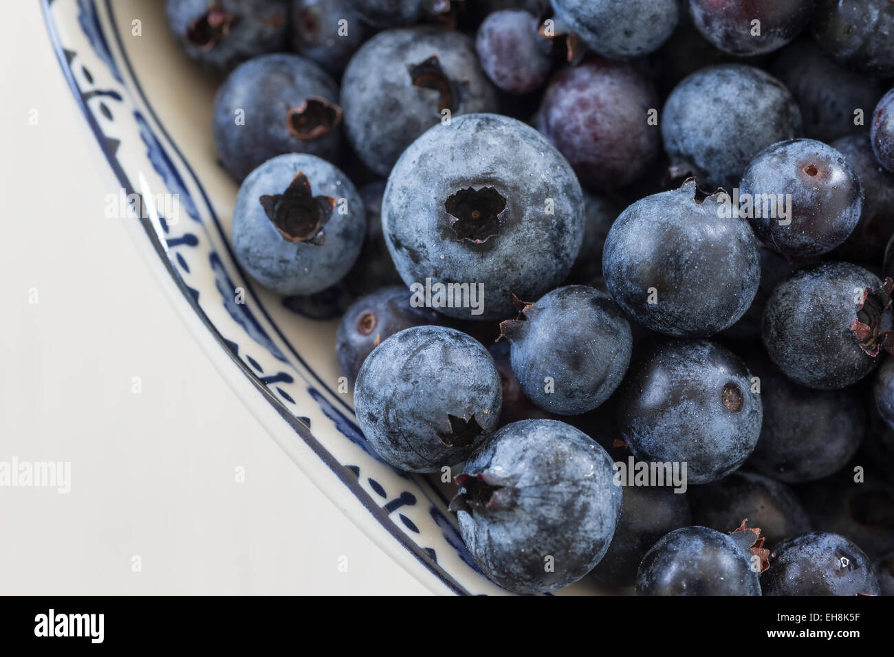 Freshly picked North American wild low bush blueberries in a china bowl. - Stock Image