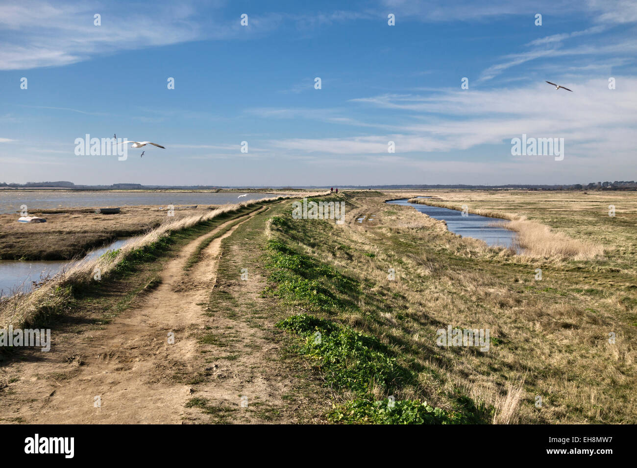 Aldeburgh, Suffolk, UK. An embankment along the edge of the River Alde protects the town from flooding - Stock Image