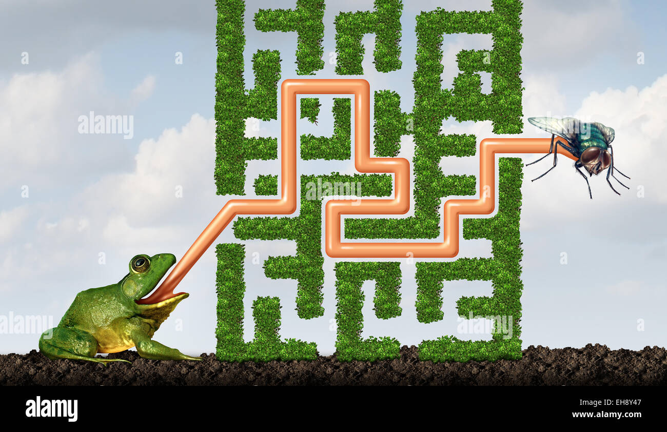 Adapting to challenges being flexible concept as a green frog with a tongue solving a maze made of plants to catch - Stock Image