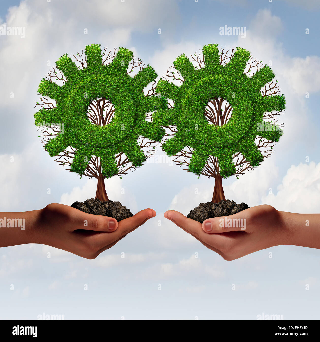 Team business strategy concept as two hands holding connected trees shaped as a gear or cog as a growing financial - Stock Image
