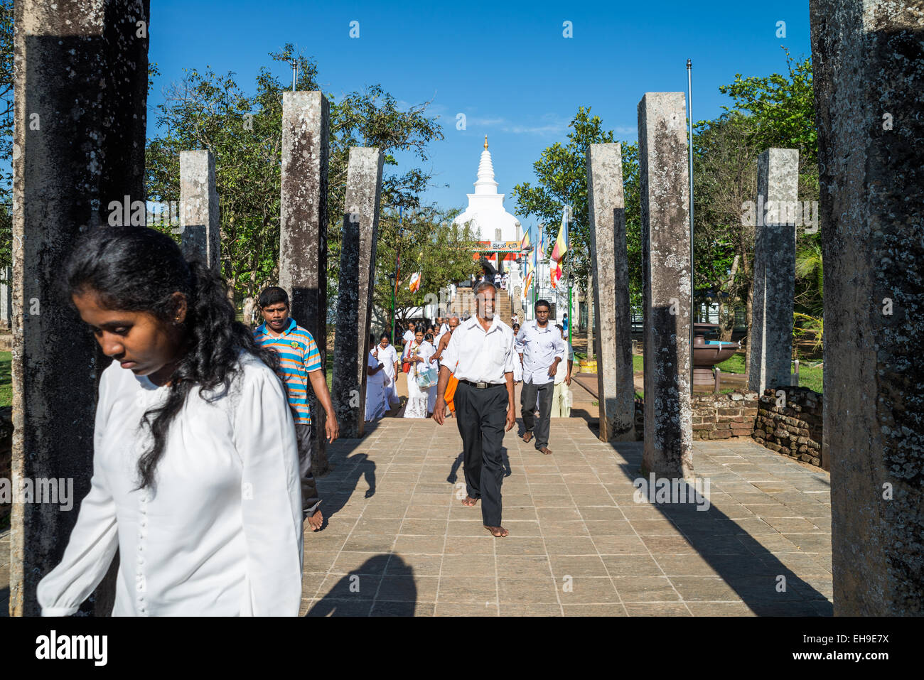 Remains of monastic refectory, Northern Ruins, Anuradhapura, UNESCO World Heritage Site, North Central Province, Stock Photo