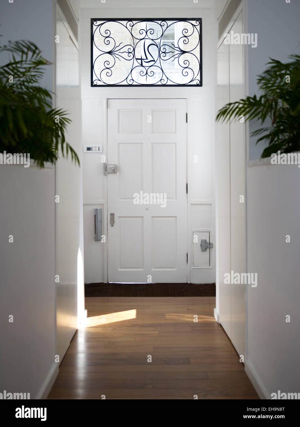 Attractive Hallway With Symmetrical Plants, Wooden Floor And Ornate House Number Window  Panel Above Front Door In Cumberland Street Home, UK