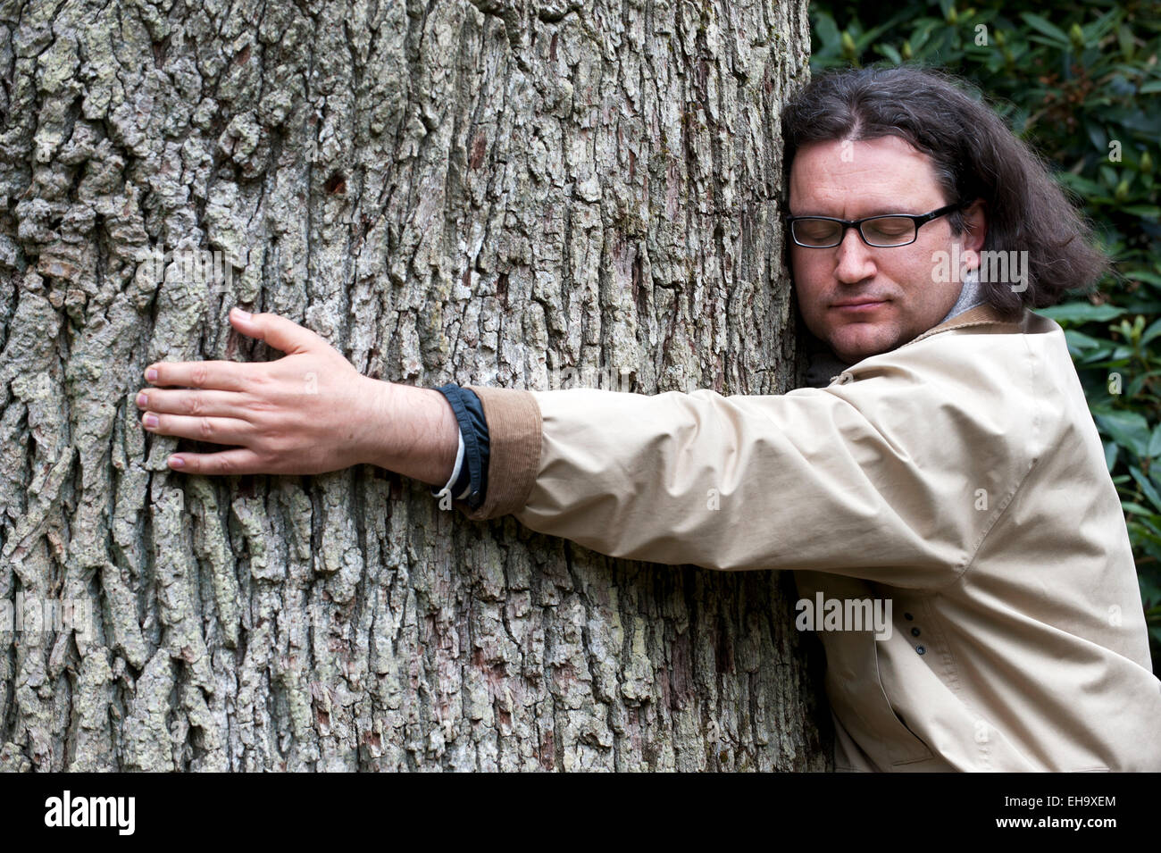 Man hugs big tree england Stock Photo