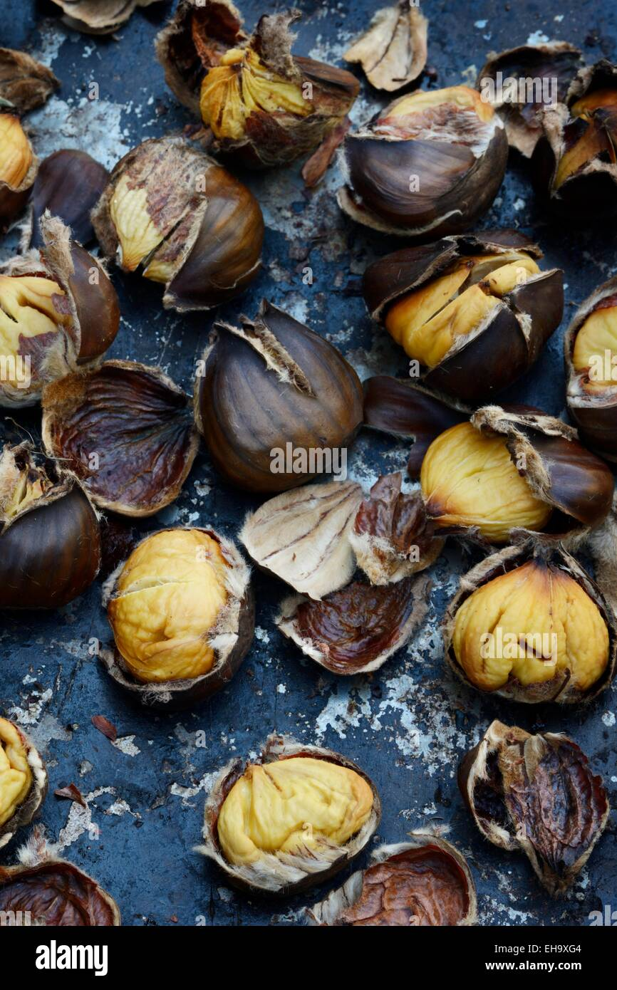 Roasted Chestnuts on a baking tray, 36MPX, HIGH RES - Stock Image