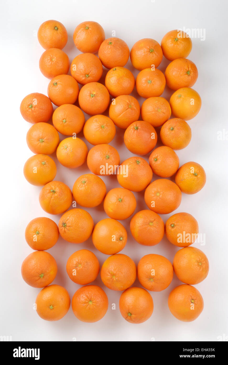 many oranges seen from above - Stock Image